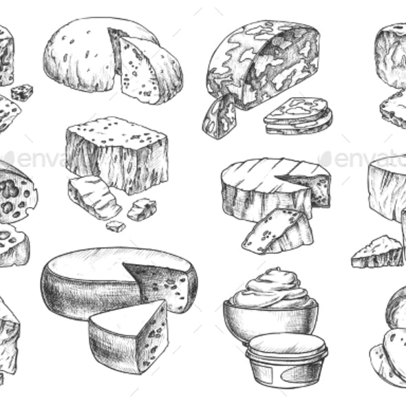 Sketch Icons of Cheese Sorts Whole and Slices