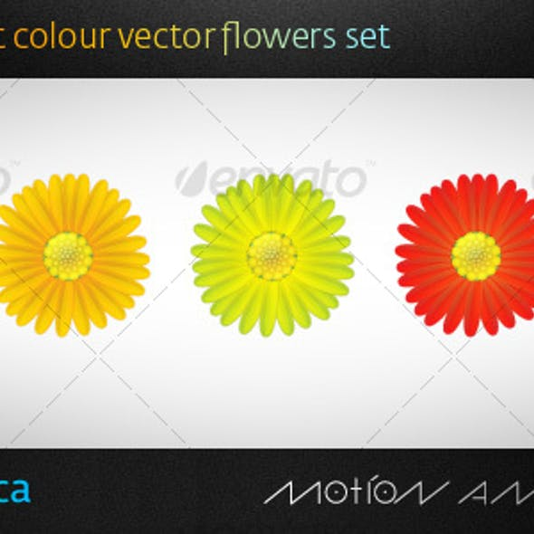 5 Vector Flowers Set