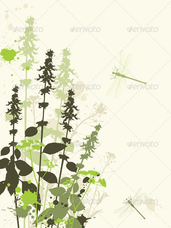 Green Wildflowers - Flowers & Plants Nature
