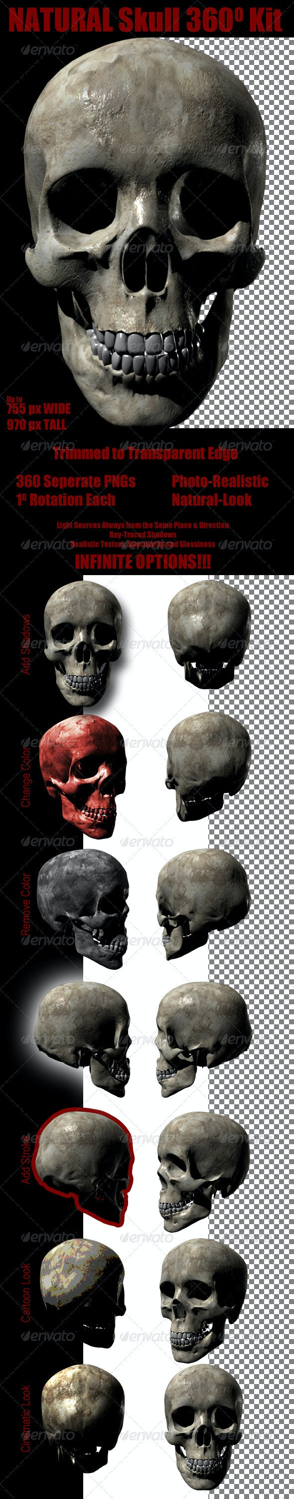 Natural Skull 360 Kit - Nature & Animals Isolated Objects