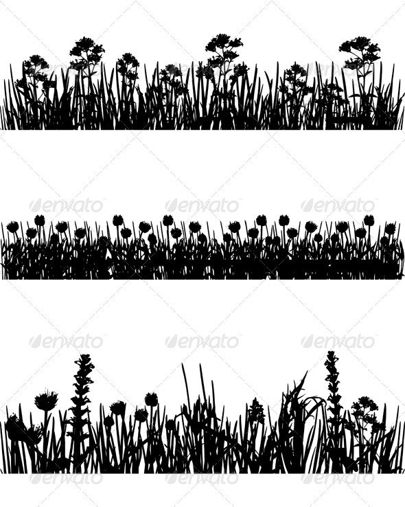 Meadow Silhouettes - Flowers & Plants Nature
