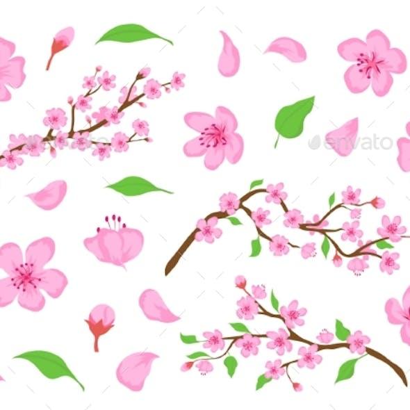 Blossom Sakura Pink Flowers Buds Leaves and Tree
