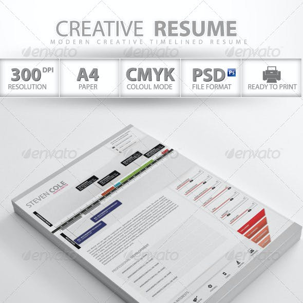 Professional Creative Resume