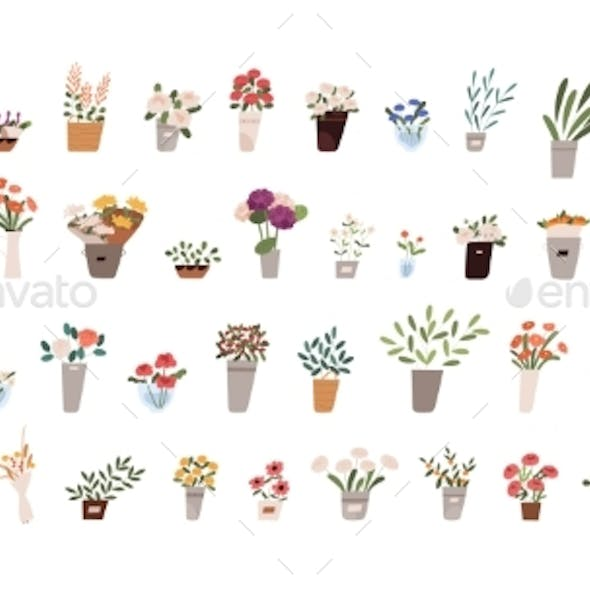 Bouquets of Flowers in Vases Set