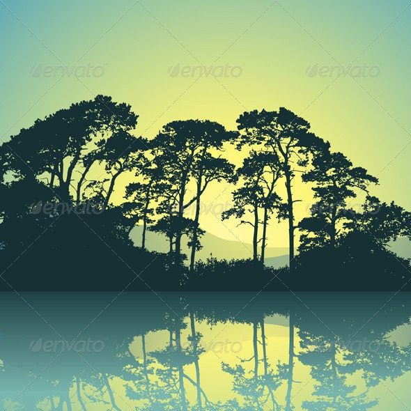 Trees Silhouette - Landscapes Nature