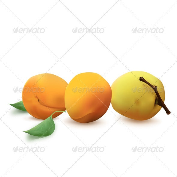 Apricots - Food Objects