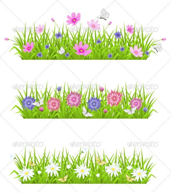 Green Grass and Flowers - Flowers & Plants Nature