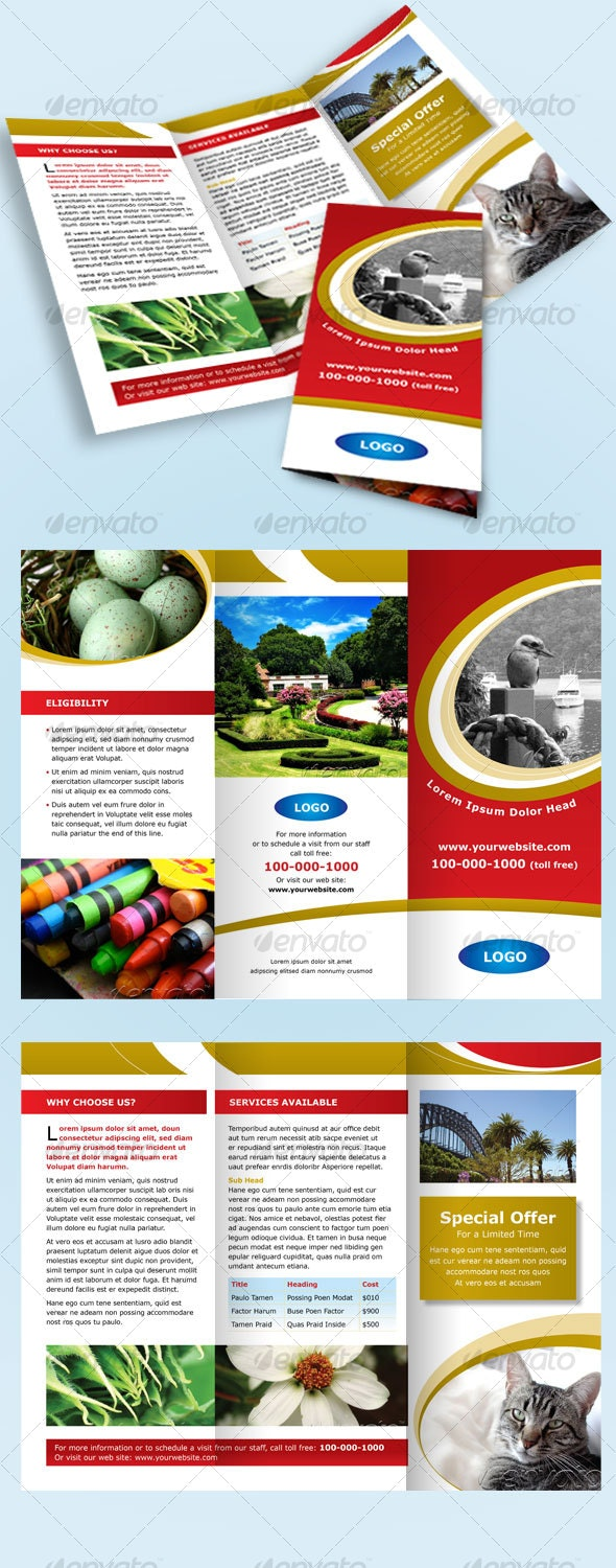 Tri-fold Red and Gold Brochure/Leaflet - Corporate Brochures
