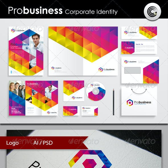 ProBusiness Corporate Identity