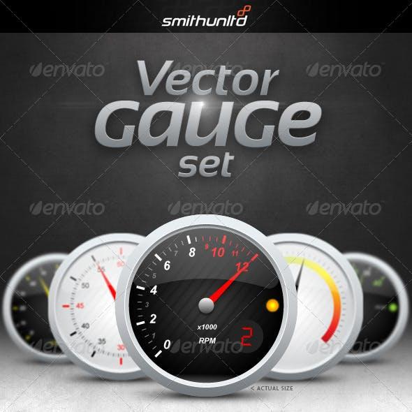 Vector Gauge