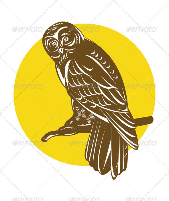 Owl on Branch Retro - Animals Characters