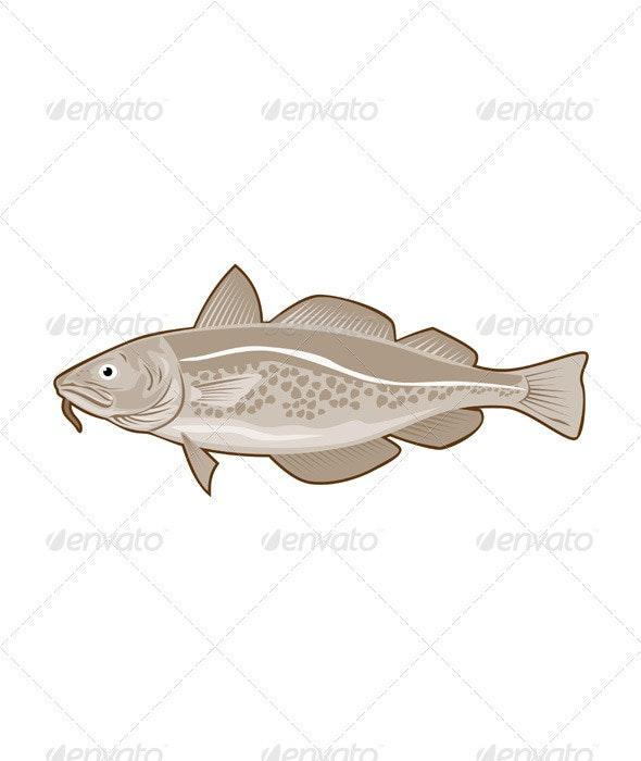 Atlantic Codfish Retro - Animals Characters
