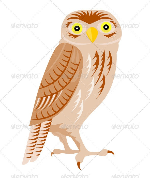 Owl Retro - Animals Characters