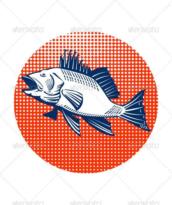 Sea Bass Retro - Animals Characters