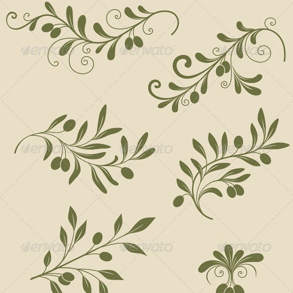 Decorative Olive Branch