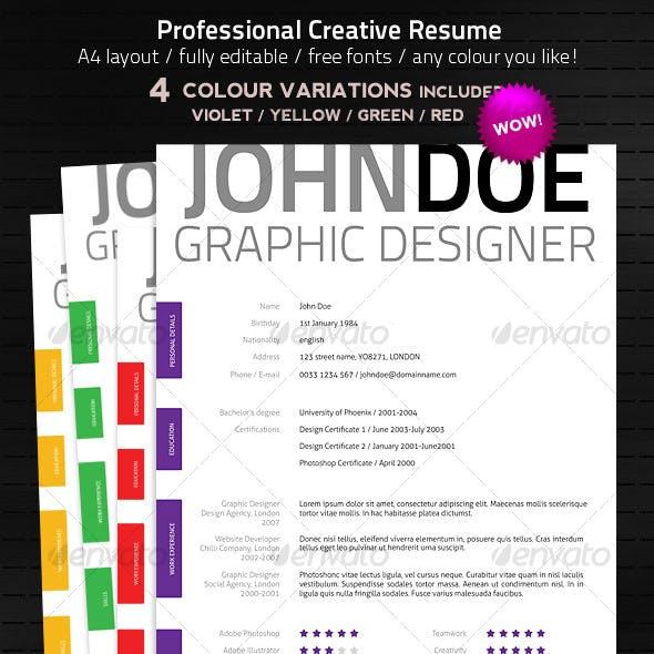 Creative & Elegant Resume