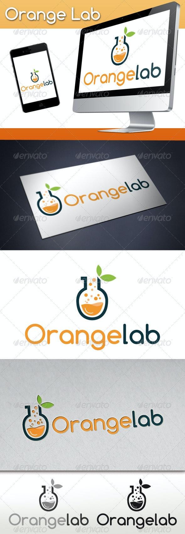 Orange Lab Studio Logo - Nature Logo Templates
