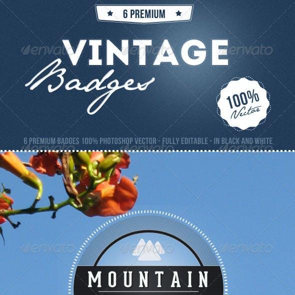 8 Premium Vintage Badges
