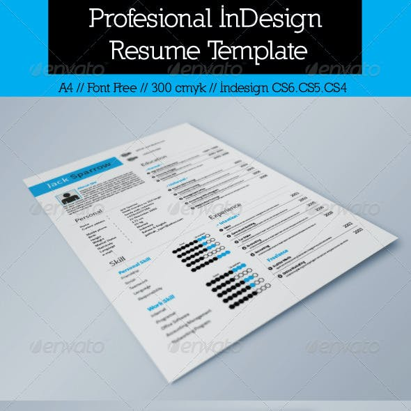 Resume Template InDesign Graphics Designs Templates