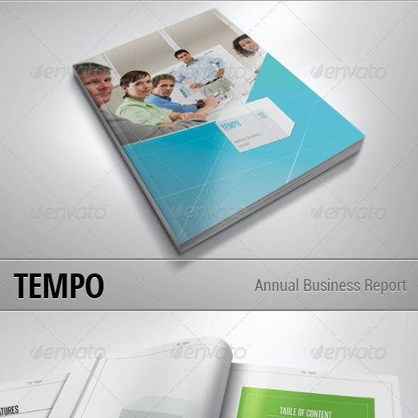 TEMPO - Annual Busines Report