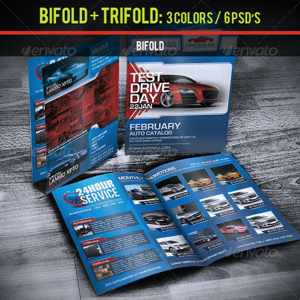 Bifold + Trifold Business Catalog Brochure