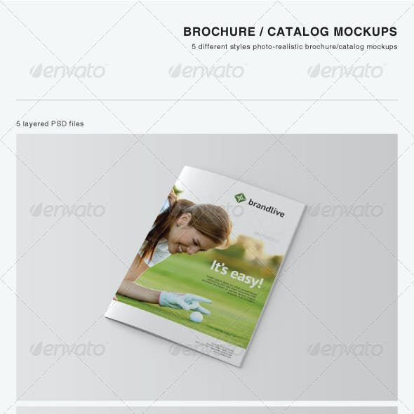Brochure / Catalog Mockups