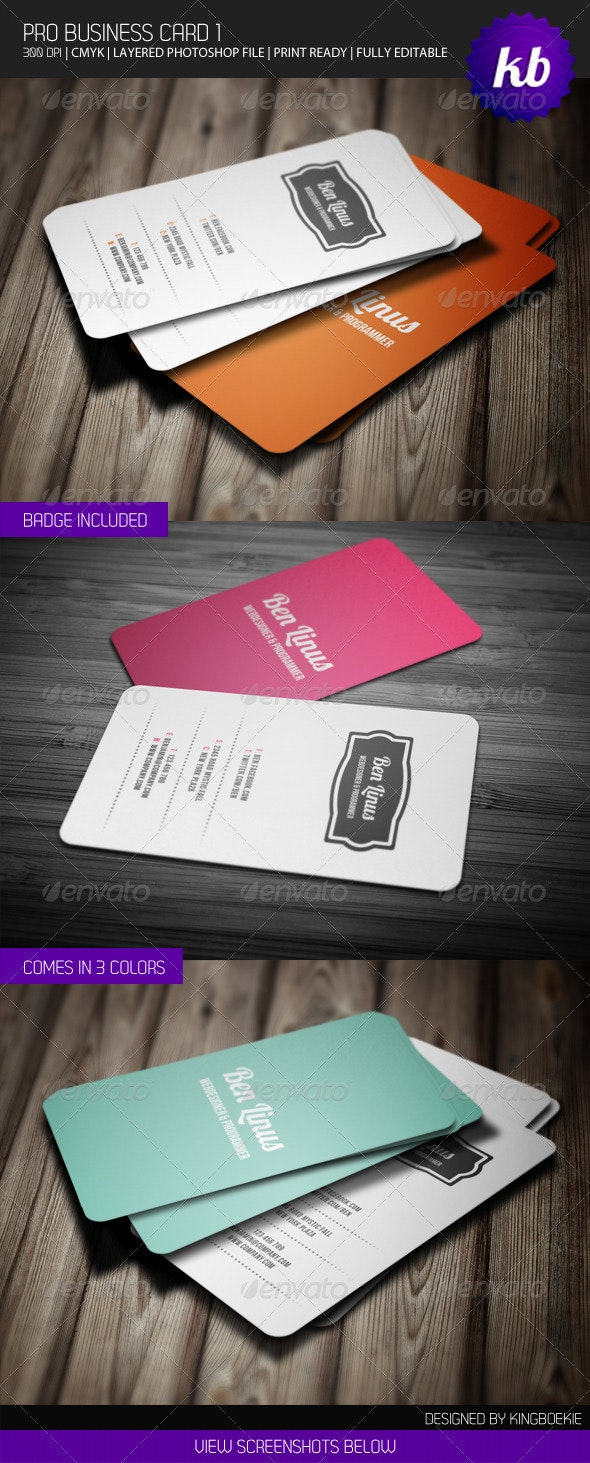 Pro Business Card 1 - Creative Business Cards