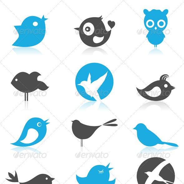 Birdie 7