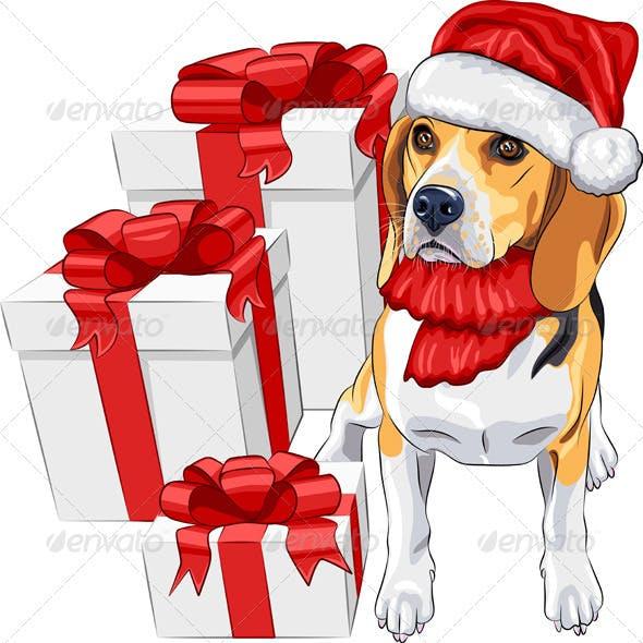 Dog Beagle in Santa Claus Hat