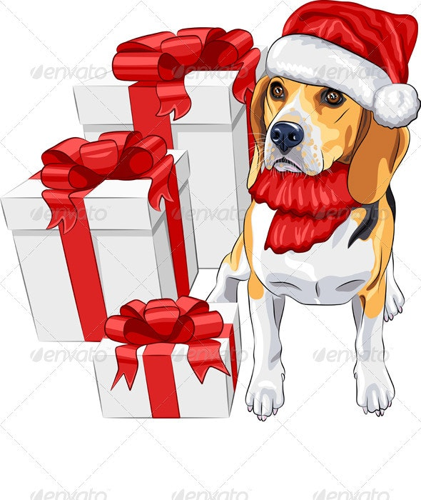 Dog Beagle in Santa Claus Hat - Seasons/Holidays Conceptual