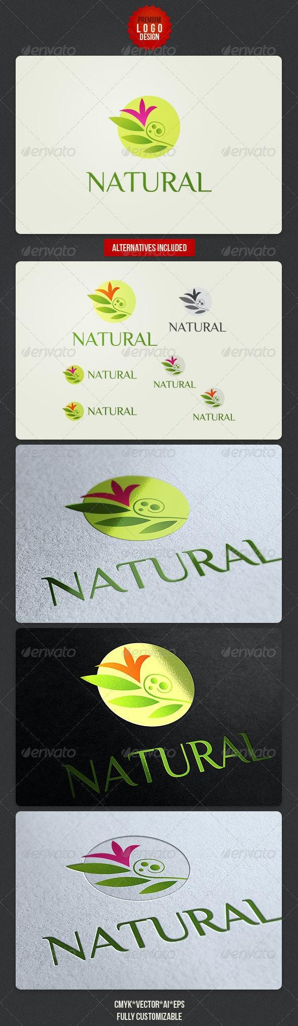 Clean Natural Logo Design - Nature Logo Templates