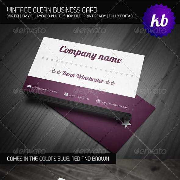 Vintage Clean Business Card