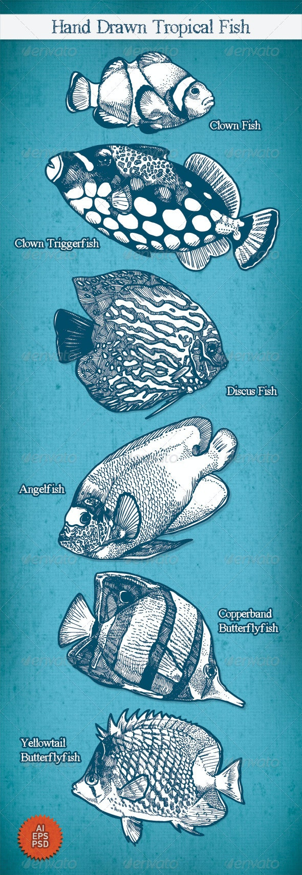 Hand Drawn Tropical Fish - Animals Characters