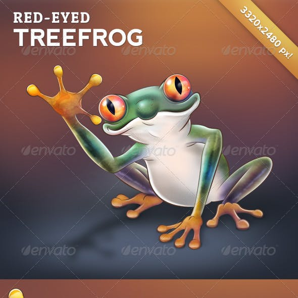 Red-Eyed Treefrog - Character Design