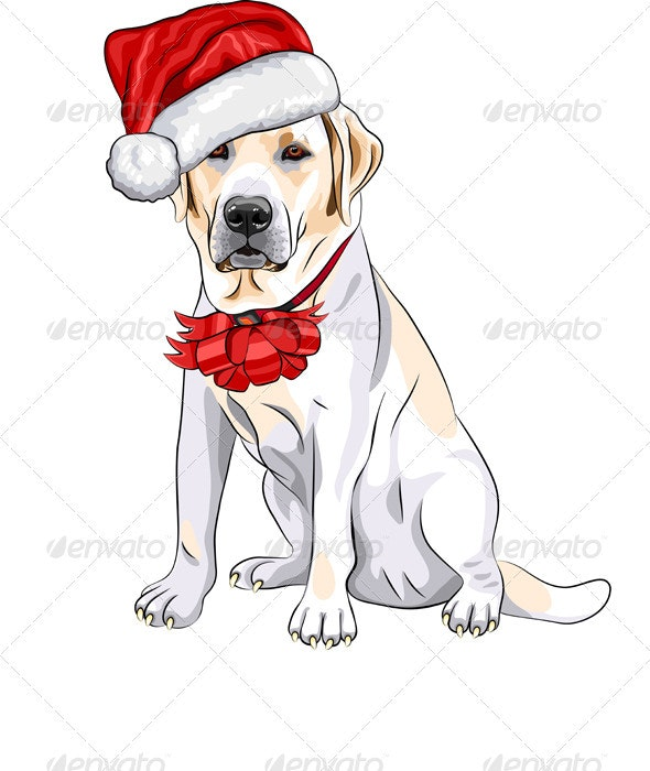 Vector Dog Labrador in the Red Hat of Santa Claus - Christmas Seasons/Holidays