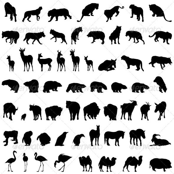 Animal Silhouette Set