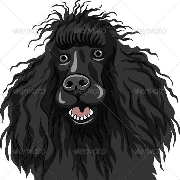 Vector Black Smiling Dog Poodle Breed