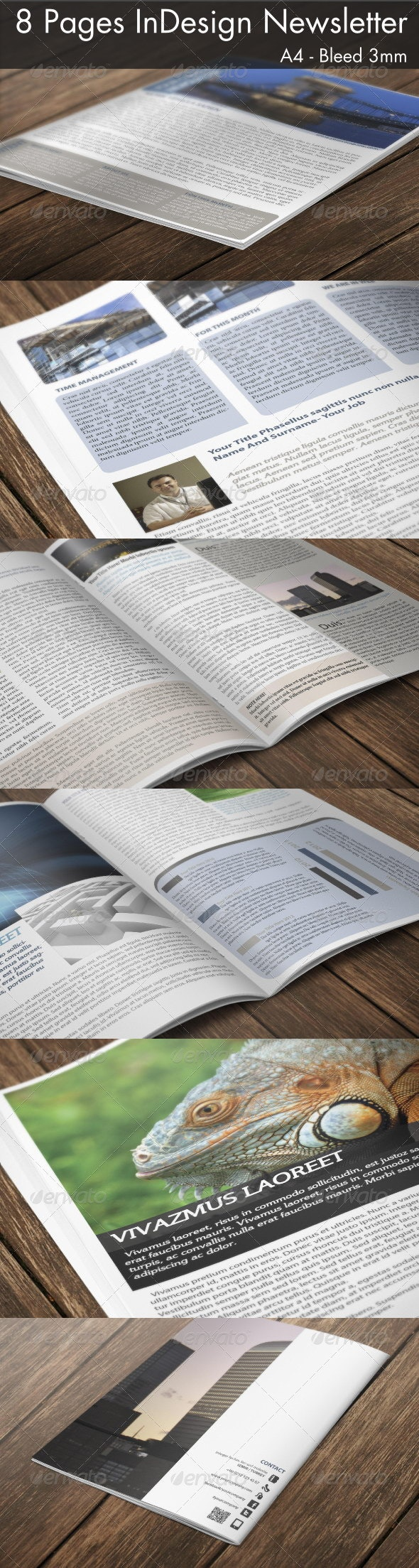 8 Page InDesign A4 Newsletter - Newsletters Print Templates