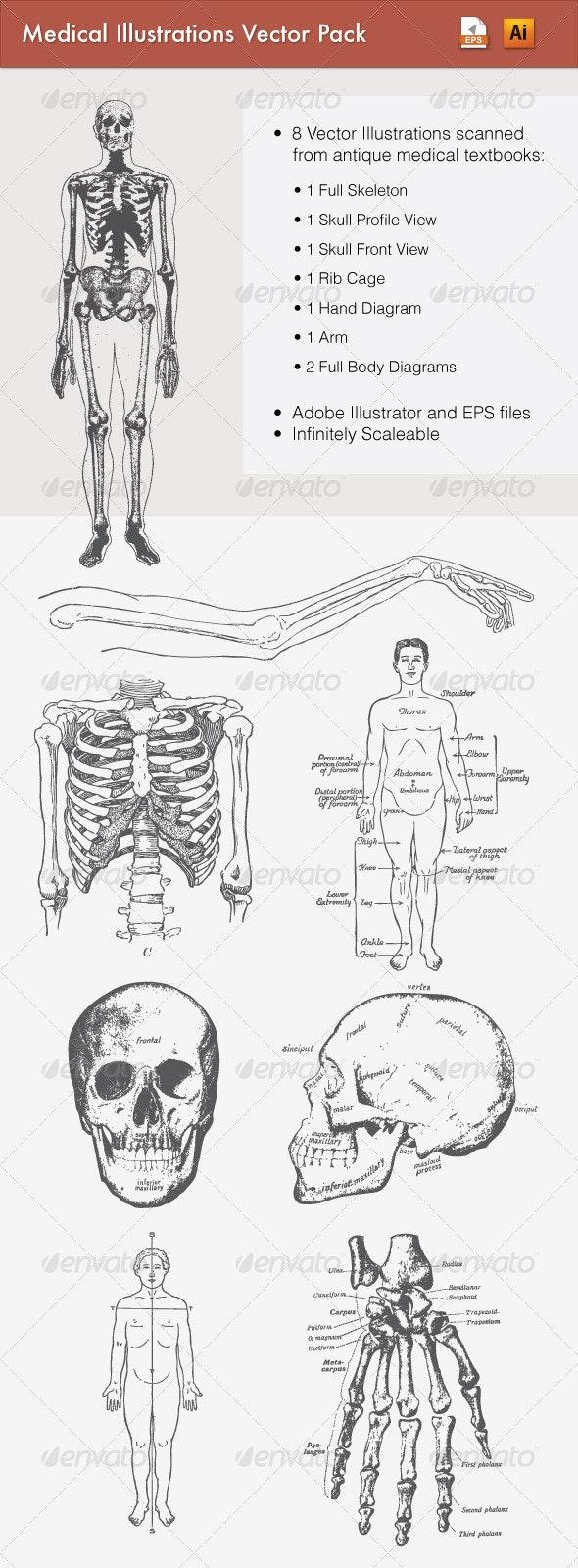 Antique Medical Illustrations Vector Pack - Health/Medicine Conceptual