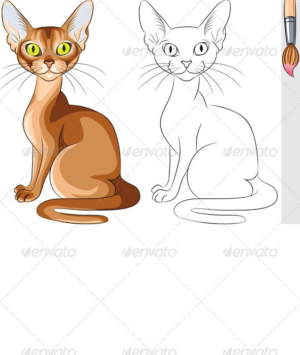 Vector Coloring Book of Serious Red Cat Abyssinian - Animals Characters