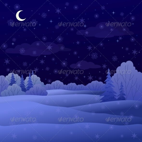 Winter Forest Night Landscape