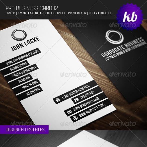 Pro Business Card 12