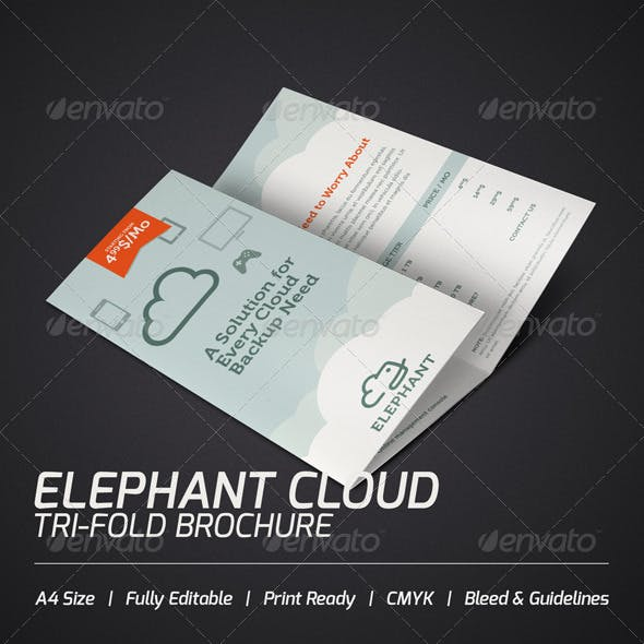 Elephant Cloud Tri-fold Brochure