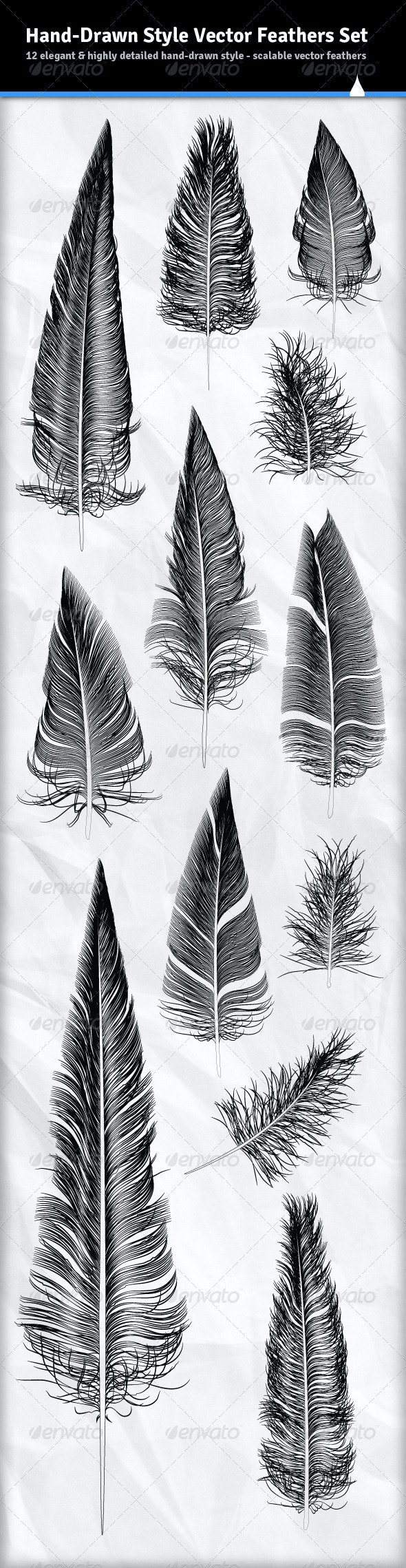 12 Various Hand Drawn Style Vector Feathers - Organic Objects Objects