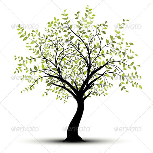 Young Vector Tree with Green Leaves Over White