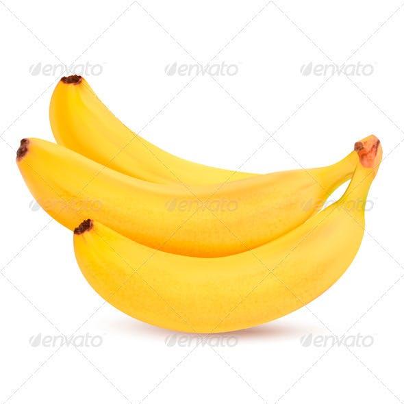Fresh Bananas - Vector