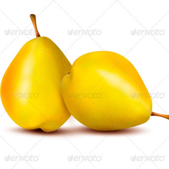 Two Ripe Pears - Vector