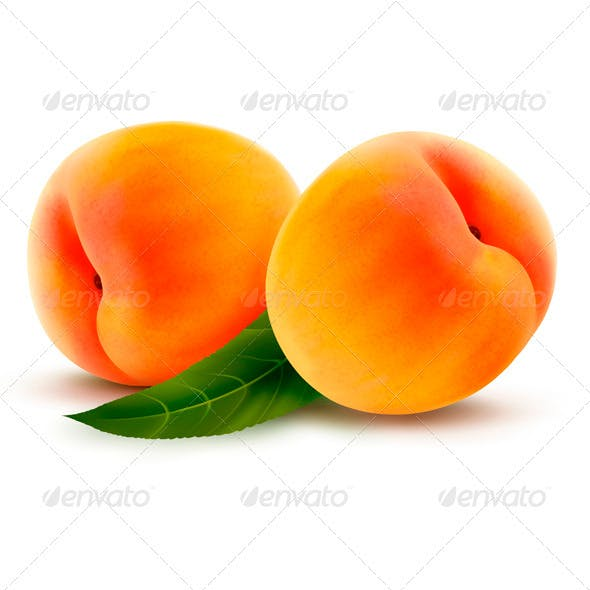 Two Fresh Peaches - Vector