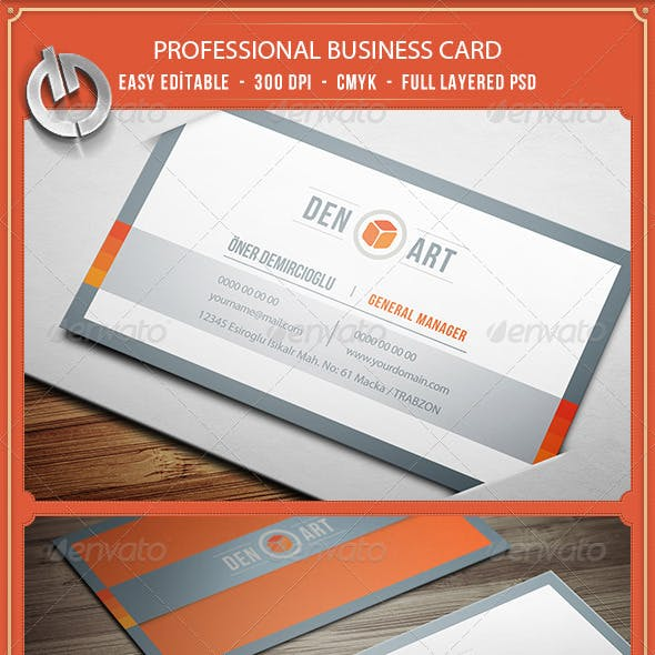 Professional  Business Card 12