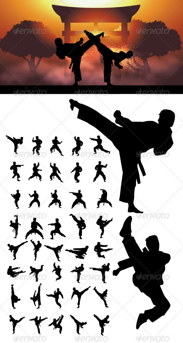 Taekwondo and Karate  Silhouettes - Sports/Activity Conceptual